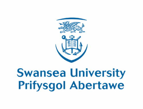 Swansea University - İngiltere